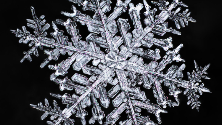 Snow Way! You Won't Believe These Amazing Snowflake Photos!