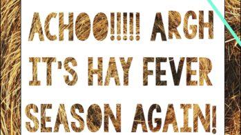 ACHOO!!!!! Argh it's hay fever season again!
